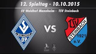 SV Waldhof Mannheim 07 vs. TSV Steinbach 12. Spieltag 15/16
