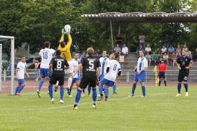 SV Waldhof Mannheim testet gegen Landesligist FV Fortuna 1911 Heddesheim ++ Spiel findet beim SV 98/07 Seckenheim statt