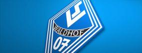 SV Waldhof Mannheim dementiert Meldung aus der Tagespresse - Verein will keinen neuen sportlichen Leiter verpflichten