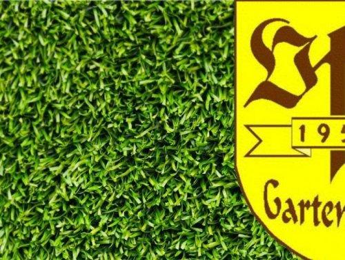 Wunsch erfüllt - Der VfB Gartenstadt greift mit der 1. Mannschaft in der Kreisliga an