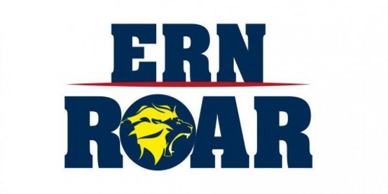Rhein-Neckar Löwen gründen eSport-Team